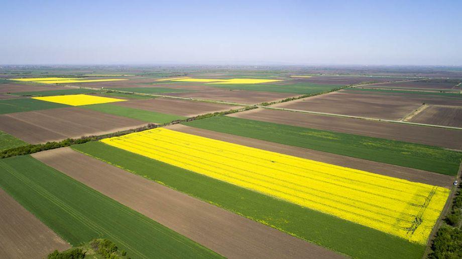 poljoprivredno-zemljiste-u-Sremu