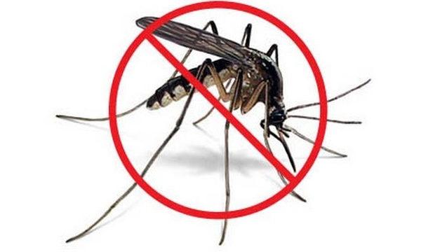 komarci-suzbijanje